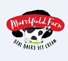 Marshfield ice cream products